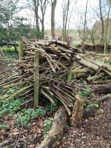 woodcarving-course-mires-beck