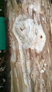 allen-stichler-newport-primary-school-carvings